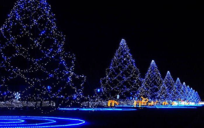 christmas tree shaped strings of lights, snow wallpaper, lights glowing in blue, deer figurines with golden lights, black background