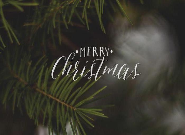 merry christmas written over dark background, snow wallpaper, tree branches in the background