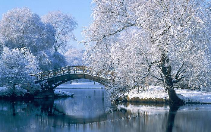 bridge over a river, surrounded by tall trees, covered with snow, snow wallpaper, blue sky