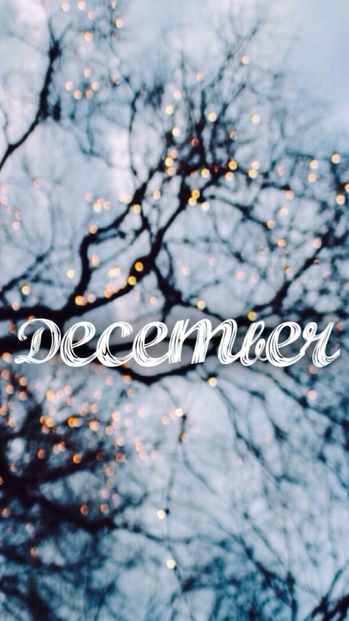 december written over tree branches, intertwined with lights, wallpapers and backgrounds, blurred background
