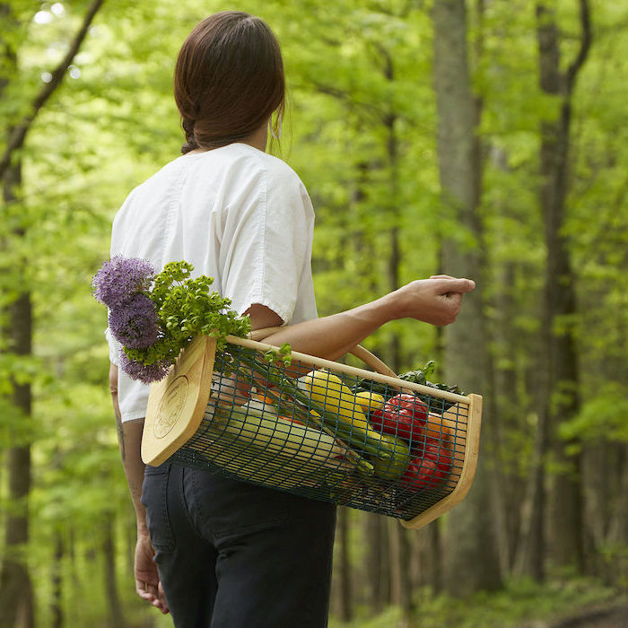 woman with braided brown hair, carrying a harvest basket full of fruits and vegetables, christmas gifts for mothers