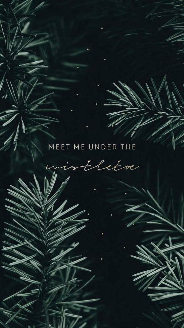 meet me under the mistletoe, written over black background, screen saver wallpaper, tree branches in the corners