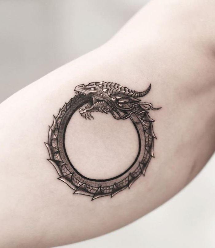 ouroboros dragon tattoo, what does a dragon symbolize, inside arm tattoo, white background