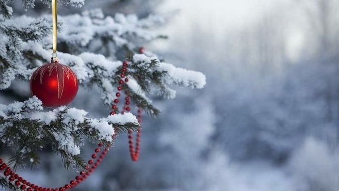 desktop backgrounds for windows 10, red bauble and pearl garland, hanging over tree branches, covered with snow