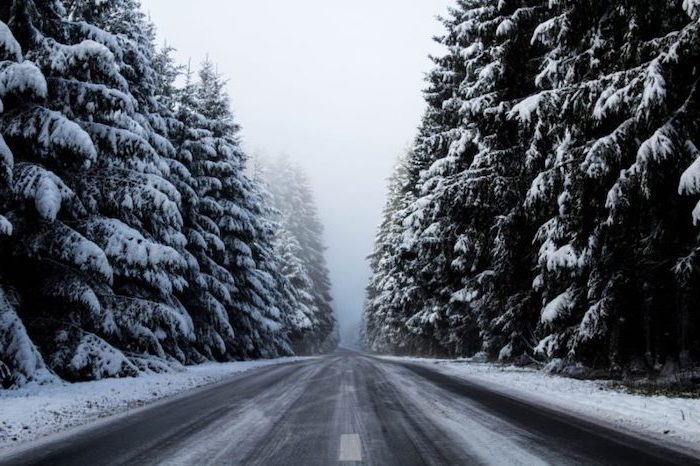 two lane road going through a forest, desktop backgrounds for windows 10, tall trees on both sides, covered with snow