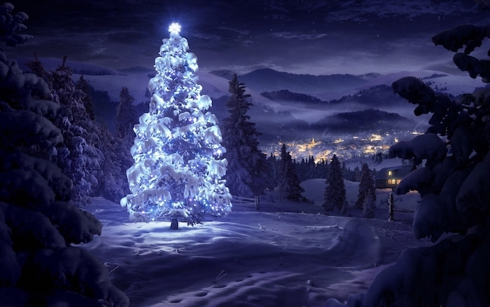 tall tree covered with snow, decorated with white led lights and star on top, laptop wallpaper, snow covered ground and trees