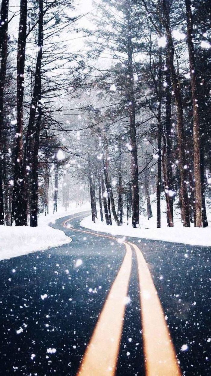 two lane road going through the forest, tall trees on both sides, covered with snow, cool computer backgrounds, snow falling