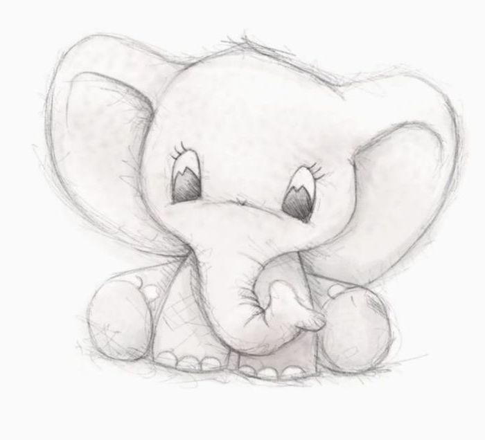 baby elephant, black and white pencil sketch, easy drawings for kids, white background