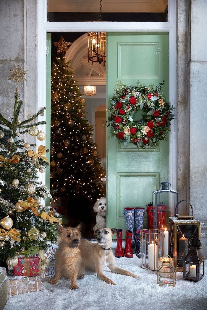 outdoor christmas decorations, decorated christmas trees and wreath on the door, lanterns and dogs standing in front of the door