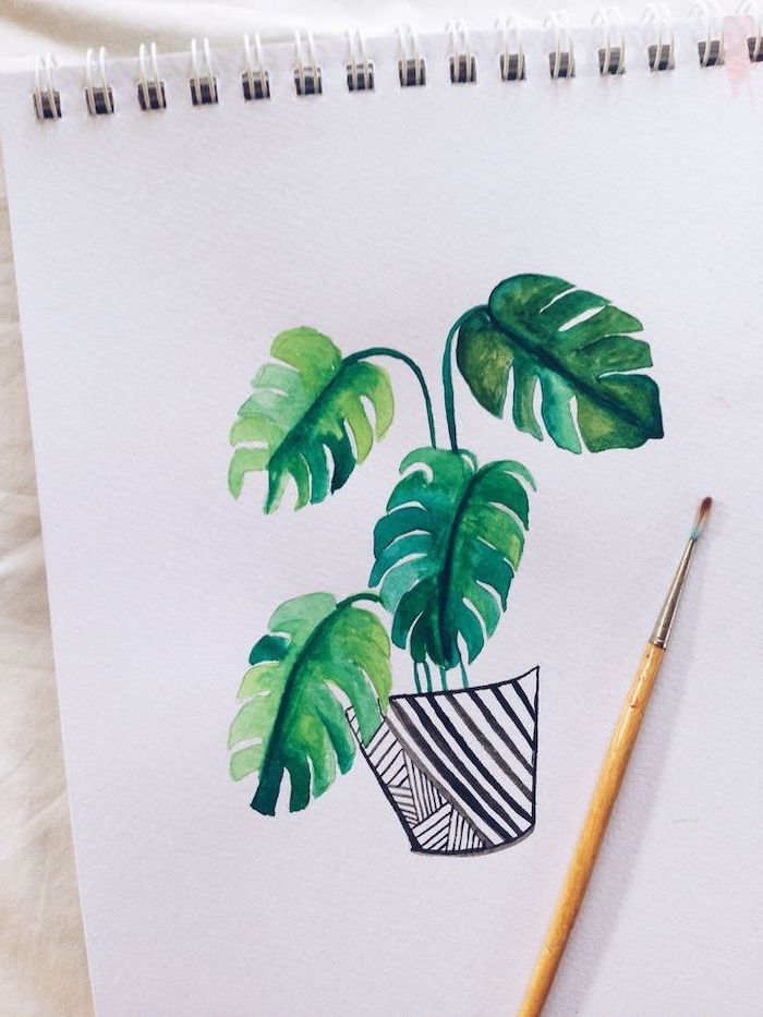 watercolor drawing, cute drawings, potted plant with large leaves, white background, colored drawing