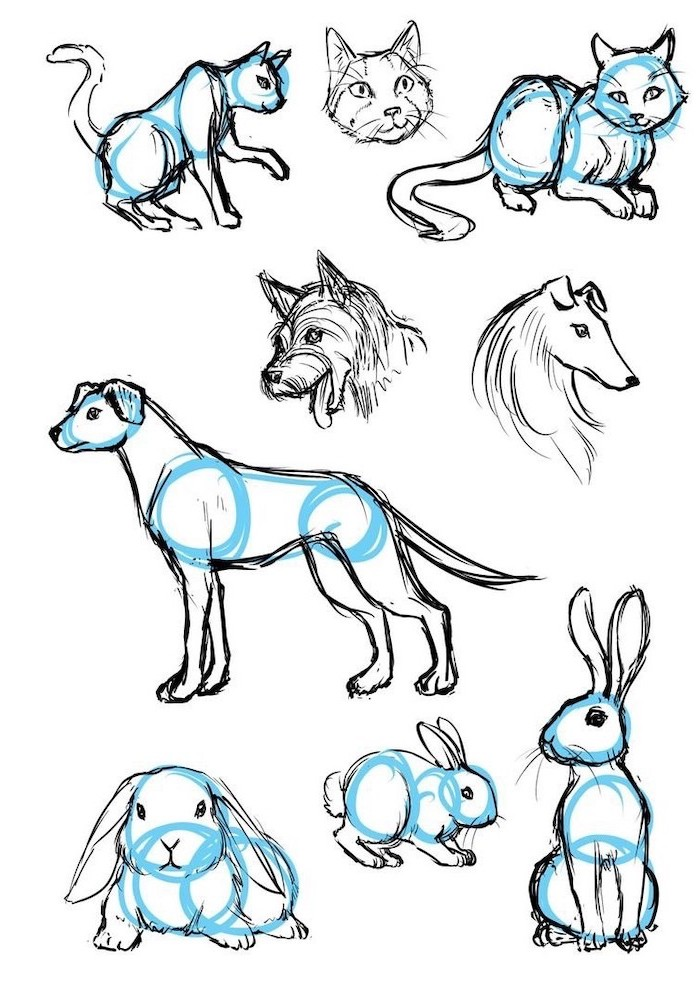 black and white pencil sketches, how to draw dogs cats and rabbits, cute kawaii drawings, step by step diy tutorials
