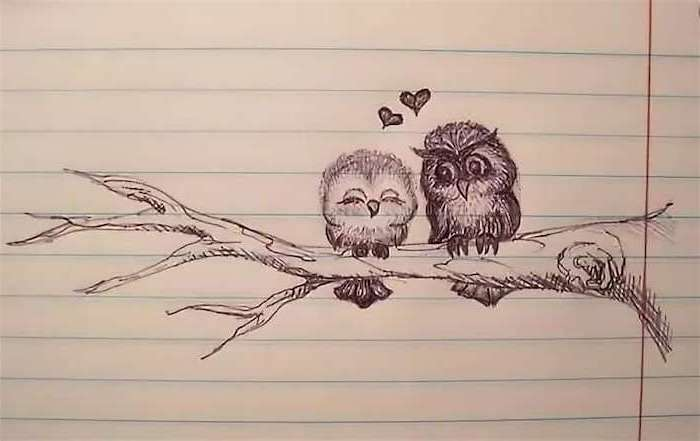 two owls sitting on a tree branch, two hearts above them, cute little drawings, drawing in a notebook