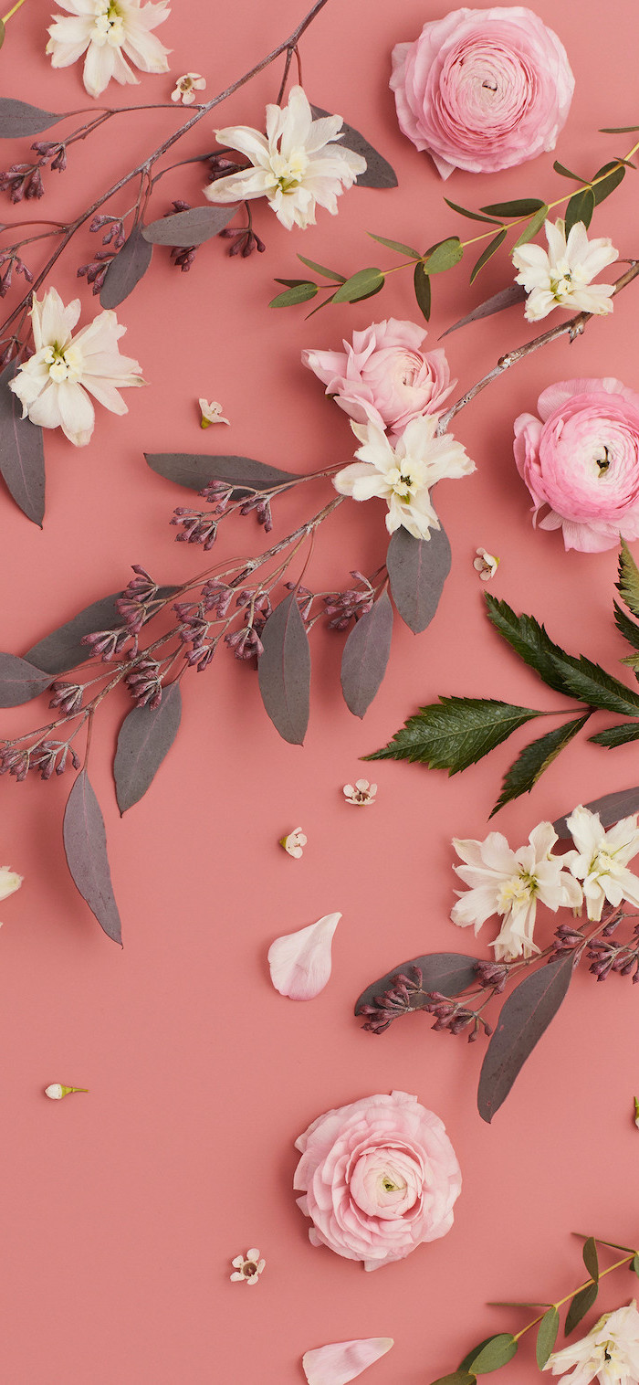 pink and white flowers with branches, arranged on pink background, aesthetic wallpaper