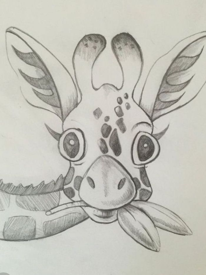 black and white pencil sketch, baby giraffe chewing leaves, easy drawings for kids, white background