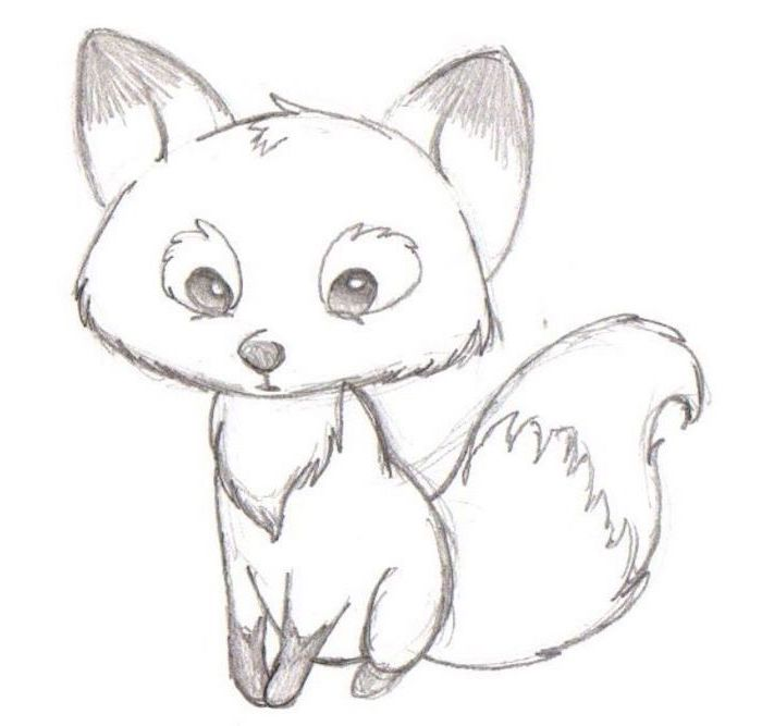 drawing of a baby fox, black and white pencil sketch, step by step drawing, white background