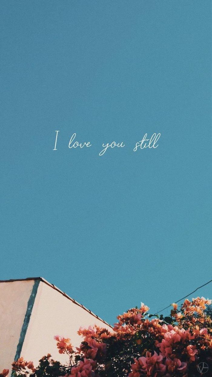 i love you still, written over the background of blue sky, cute aesthetic wallpapers, flower bush in the corner