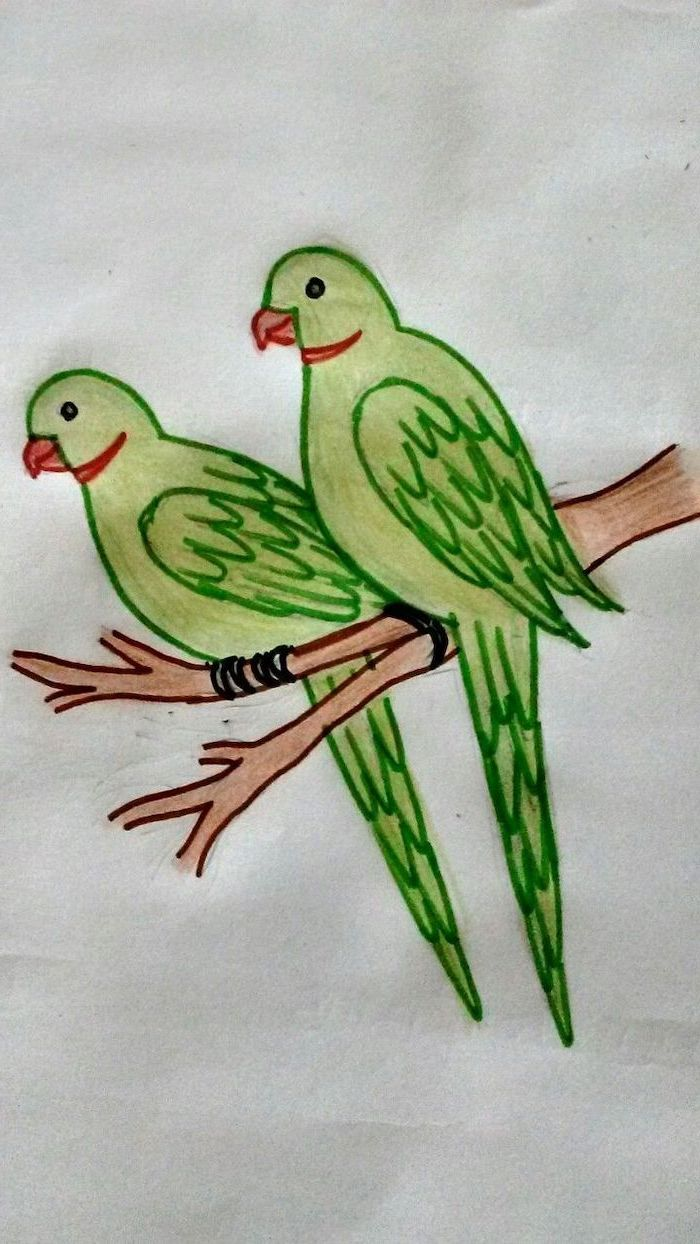 two green birds, standing on a branch, simple easy drawings, colored with pencils on white background