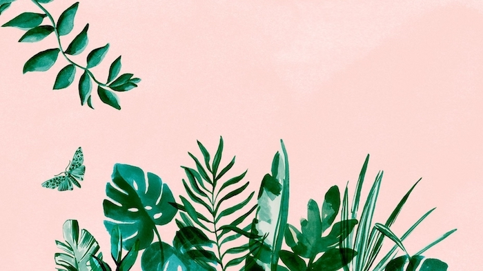 painting of green palm leaves, arranged at the bottom, on pink background, aesthetic phone backgrounds, different leaves