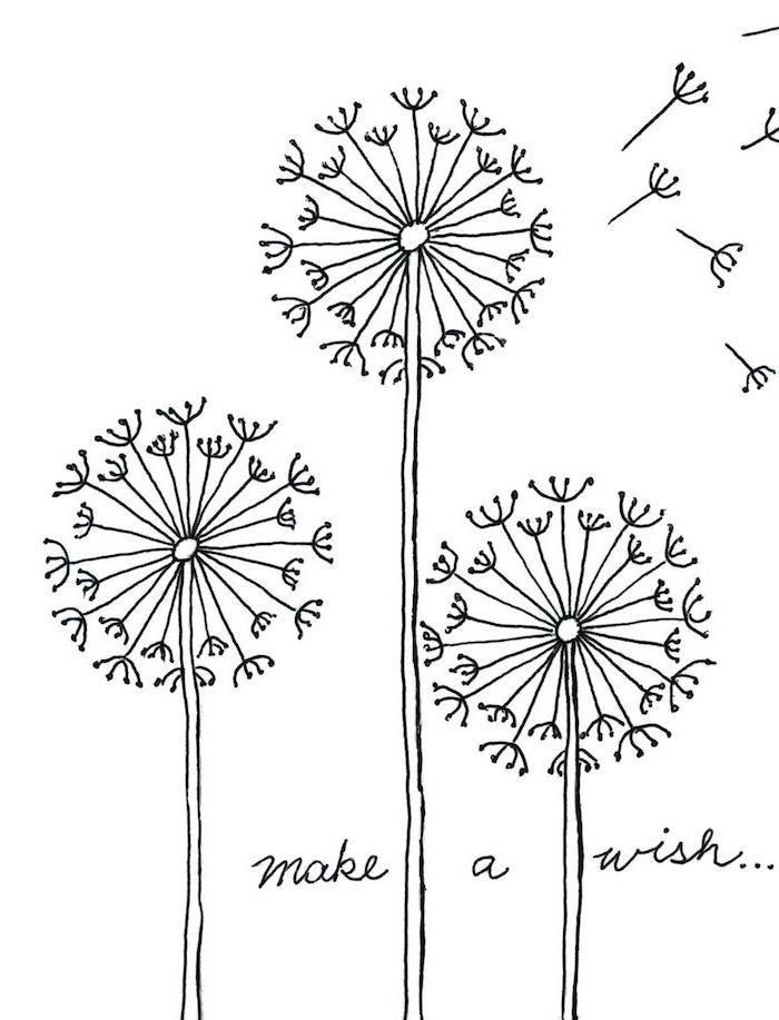 drawing of three dandelions, cute drawings for kids, make a wish written at the bottom, black and white sketch