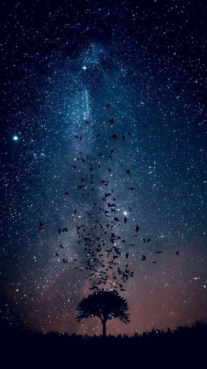 tree in the middle with birds flying away from it, cute galaxy wallpaper, sky filled with stars in blue and orange