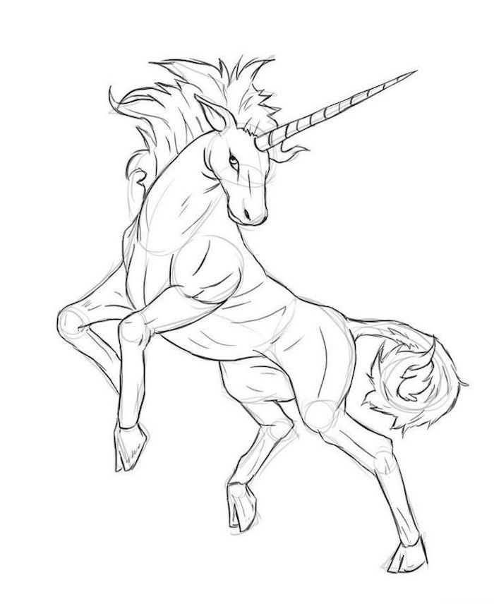 cute unicorn drawings, black and white pencil sketch of a unicorn, drawn on white background