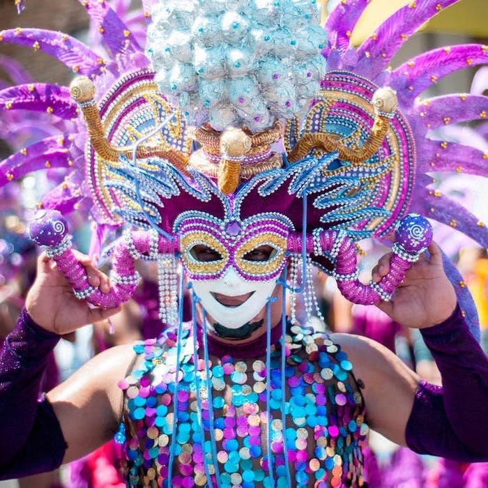 full costume decorated with colorful sequins, large mask and hat, mardi gras mask, decorated with glitter and rhinestones