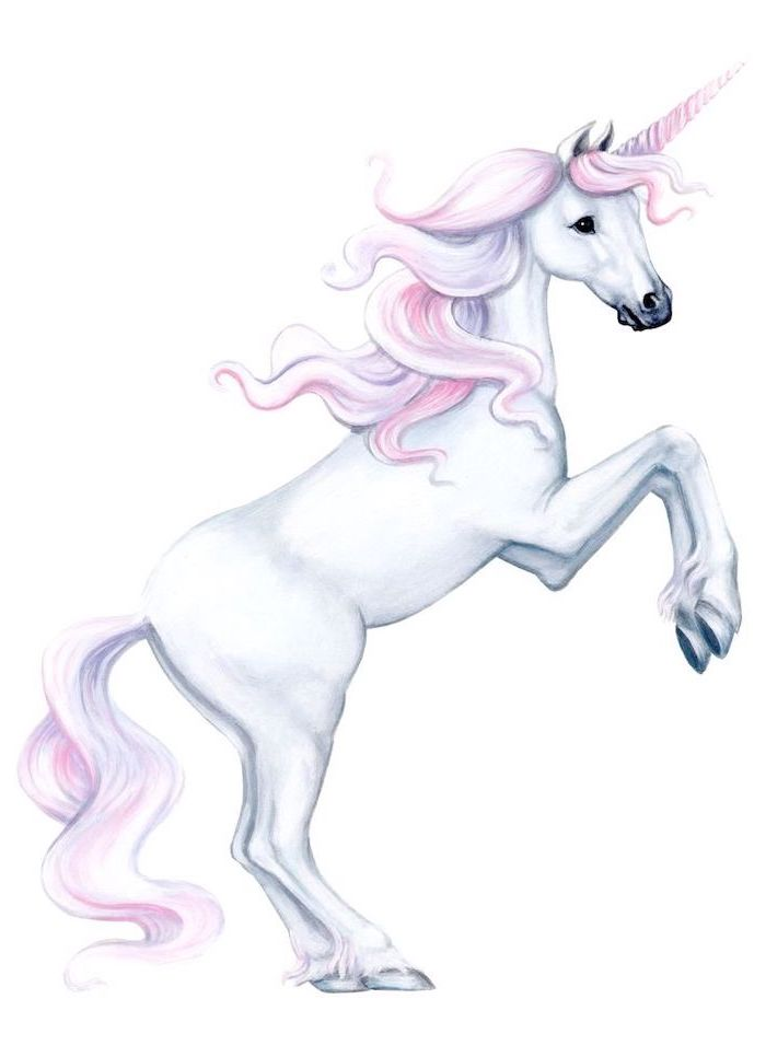 drawing of a white unicorn, pink and purple mane and horn, drawn on white background, how to draw a unicorn step by step