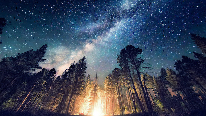 galaxy phone wallpaper, forest landscape, fire burning between tall trees, sky filled with stars above them