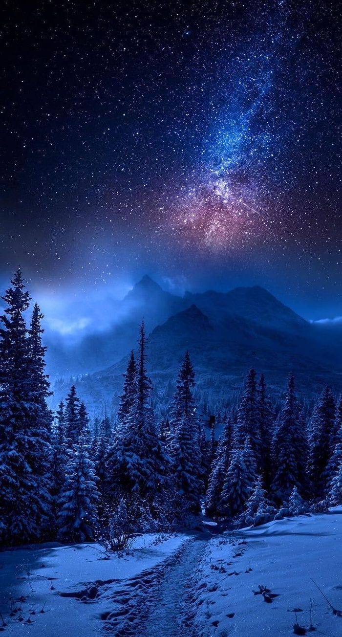 forest mountain landscape, covered with snow, space wallpaper iphone, sky filled with stars above