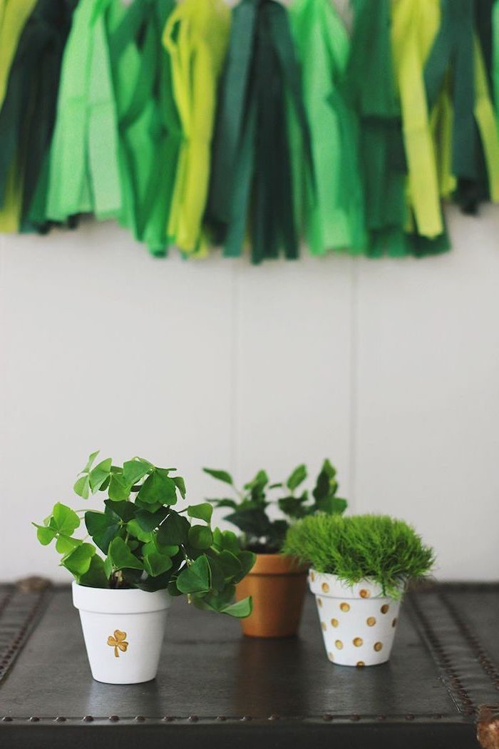 green and gold tassel garland in the background, st paddy's day, green plants in white pots with gold shamrocks