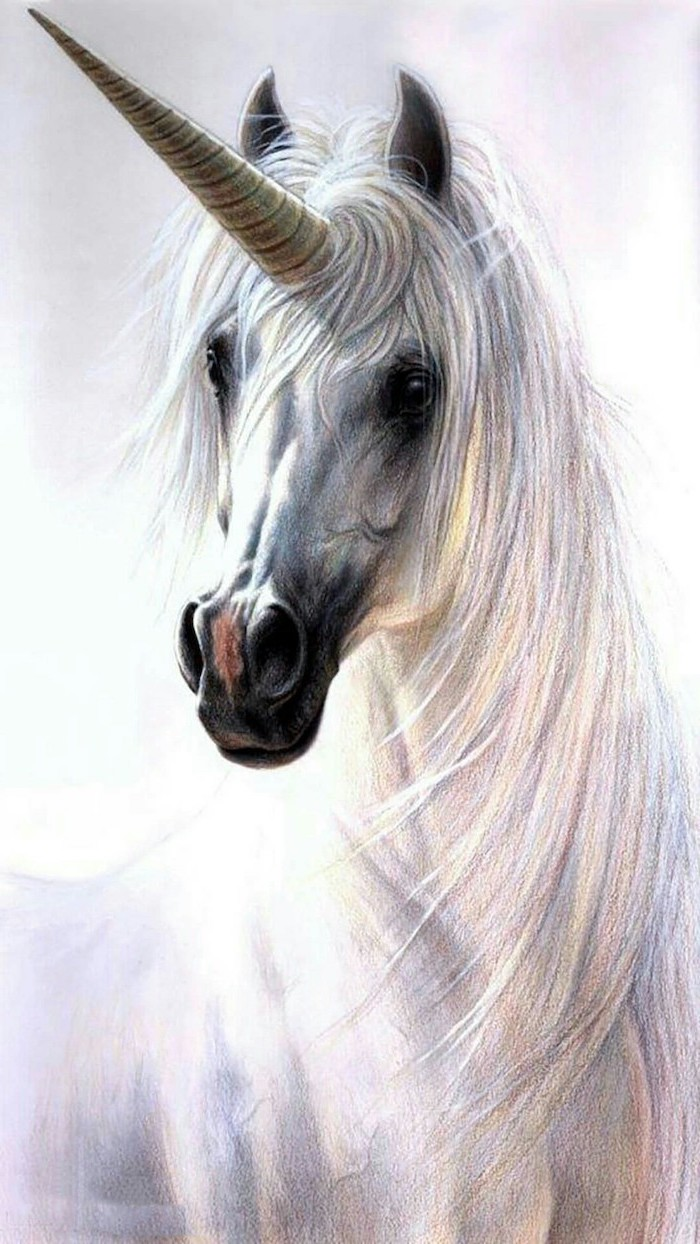 painting of a white unicorn, how do you draw a unicorn, painted on white background, realistic painting