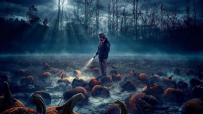 jim hopper holding a flashlight, stranger things wallpaper iphone, standing in the middle of pumpkin patch field