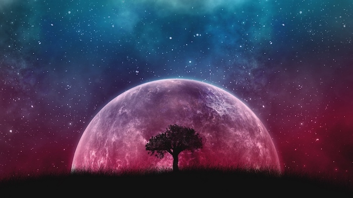 cartoon image of a tree, planet and galaxy behind it, purple galaxy background, sky filled with stars in blue and purple