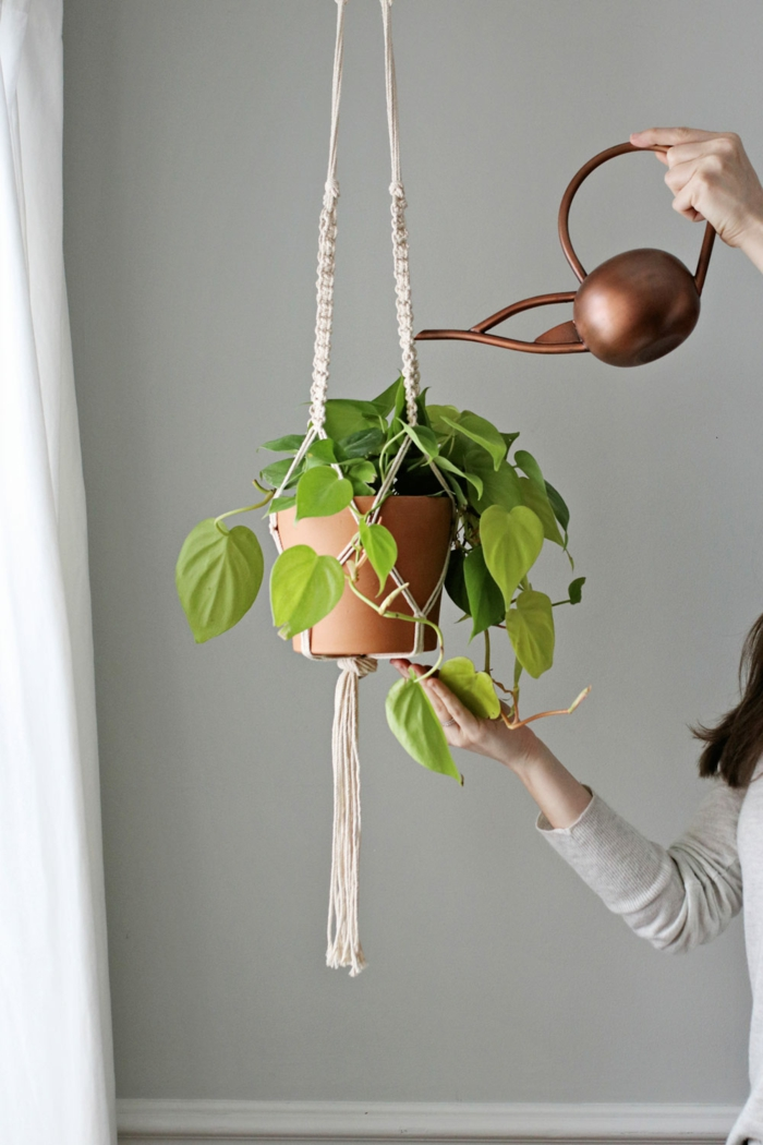 how to make a hanging planter, ceramic pot hanging from the ceiling, water poured over the plant