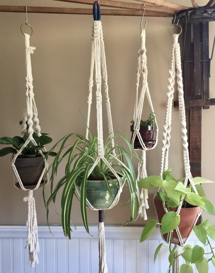 four different plants hanging from wooden rack, beige wall in the background, how to make a hanging planter