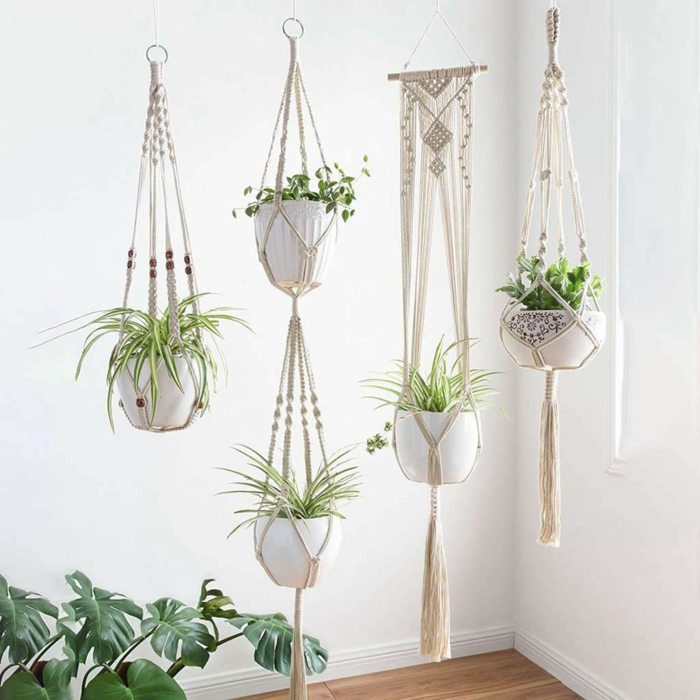 macrame plant hanger tutorials, five different plants, hanging from the ceiling, white wall background