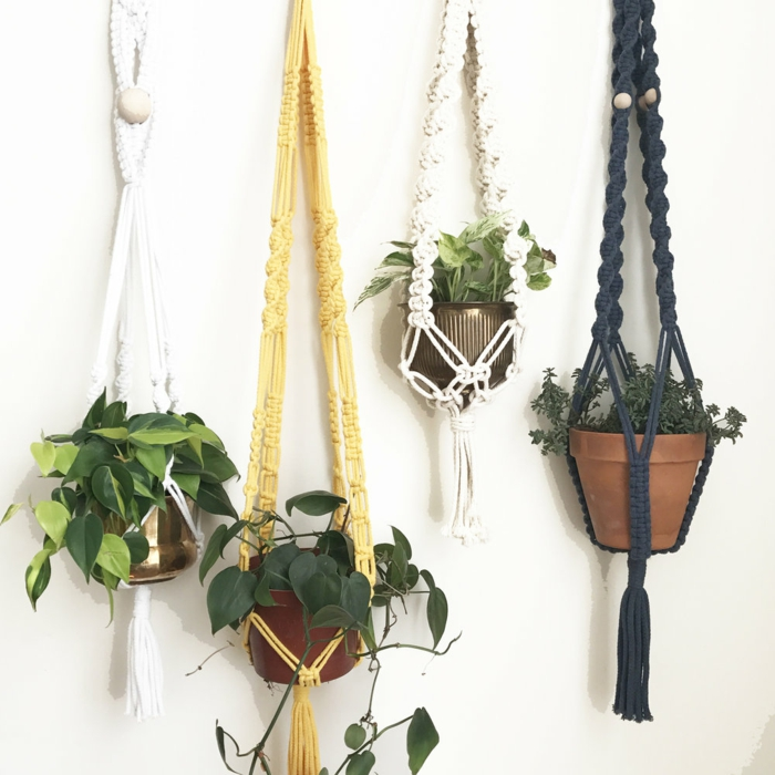 four different plants hanging from white wall, macrame plant hanger tutorials, macrame in white black and orange