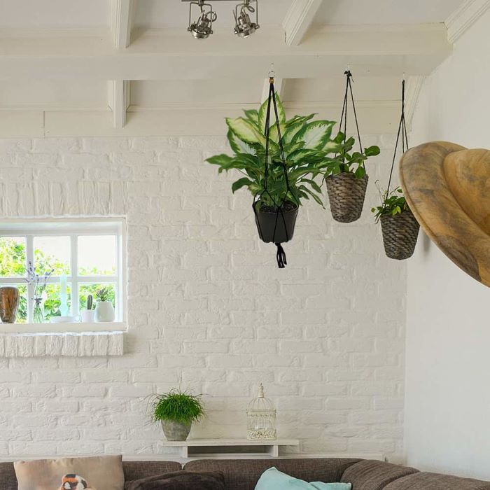 three different plants hanging from the ceiling, macrame plant hanger tutorials, living room with white brick wall