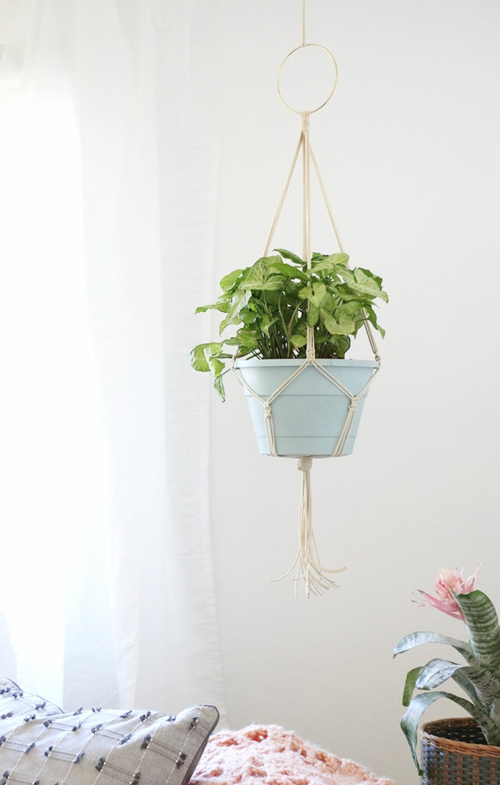 plant hanging from the ceiling, easy macrame plant hanger, hanging over a living room sofa