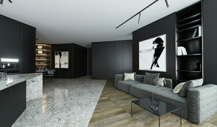black walls with artwork on them, contemporary living room, mixed granite and wooden floor, grey sofa