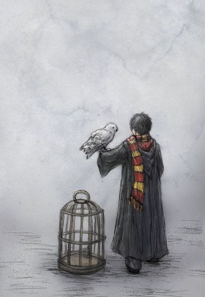 harry wearing black robe, gryffindor scarf, harry potter drawings, hedwig on his arm, bird cage next to him