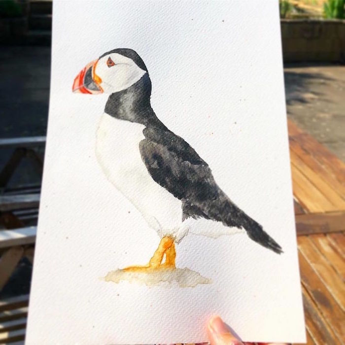 black and white bird, beak in red orange and black, painted on white background, watercolor painting for beginners