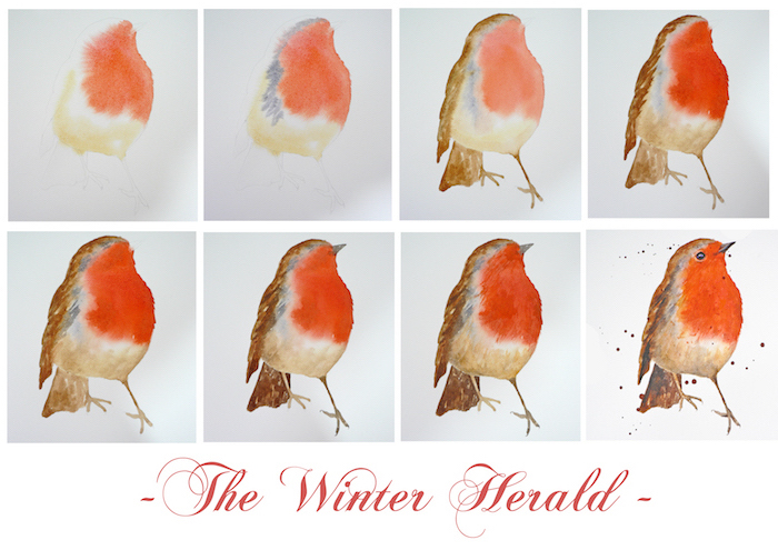 the winter herald, how to draw a robin bird, easy paintings for beginners, step by step diy tutorial in eight steps