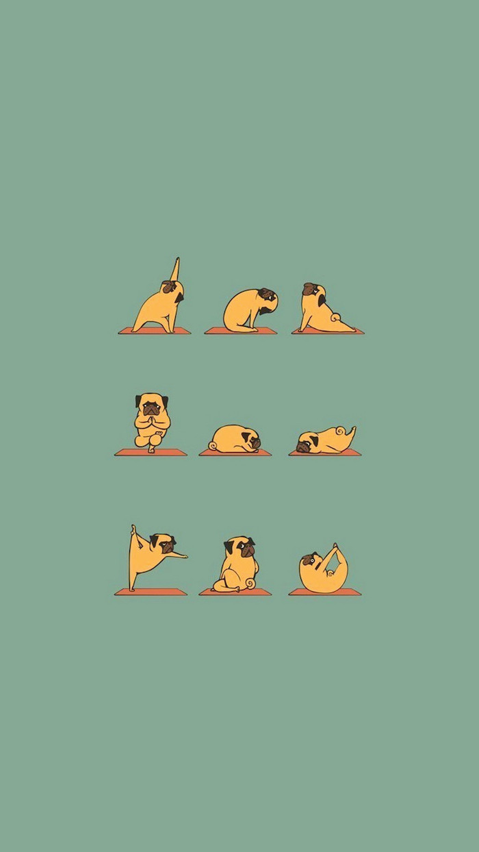 drawing of a pug doing different yoga poses on green background cute pictures for wallpaper