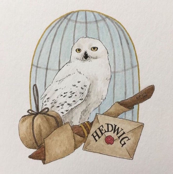 drawing of hedwig, hermione granger drawing, colored drawing, flying broom and letter at the front