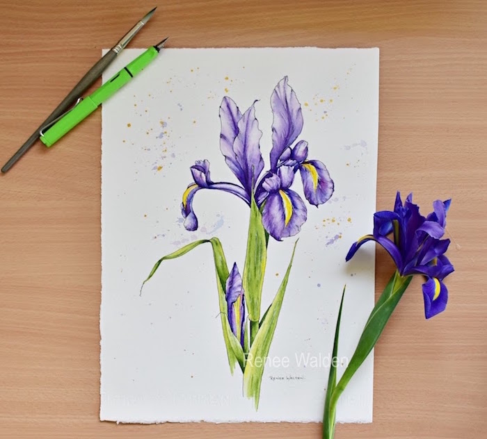 painting of an orchid, painted with purple and green watercolor, easy watercolor painting ideas, white background