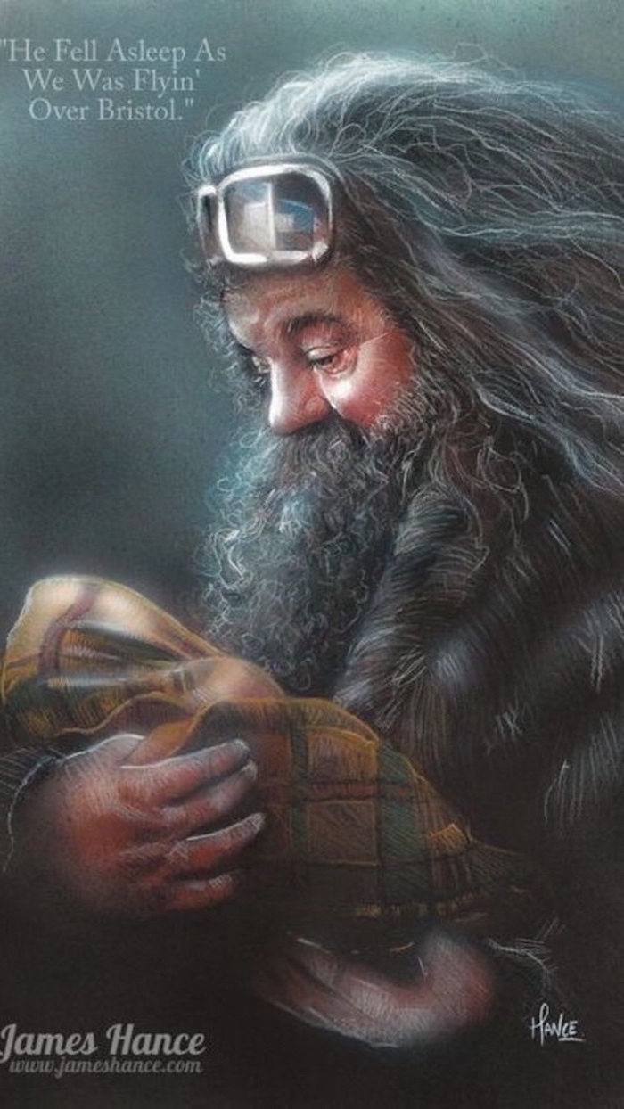 hagrid wearing goggles, holding baby harry, wrapped in blanket, cartoon harry potter characters, colored drawing