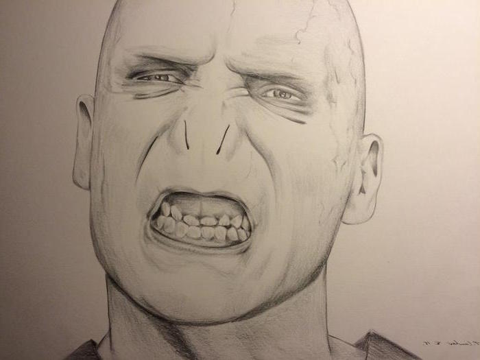 portrait drawing of voldemort, how to draw hermione granger, black and white pencil drawing