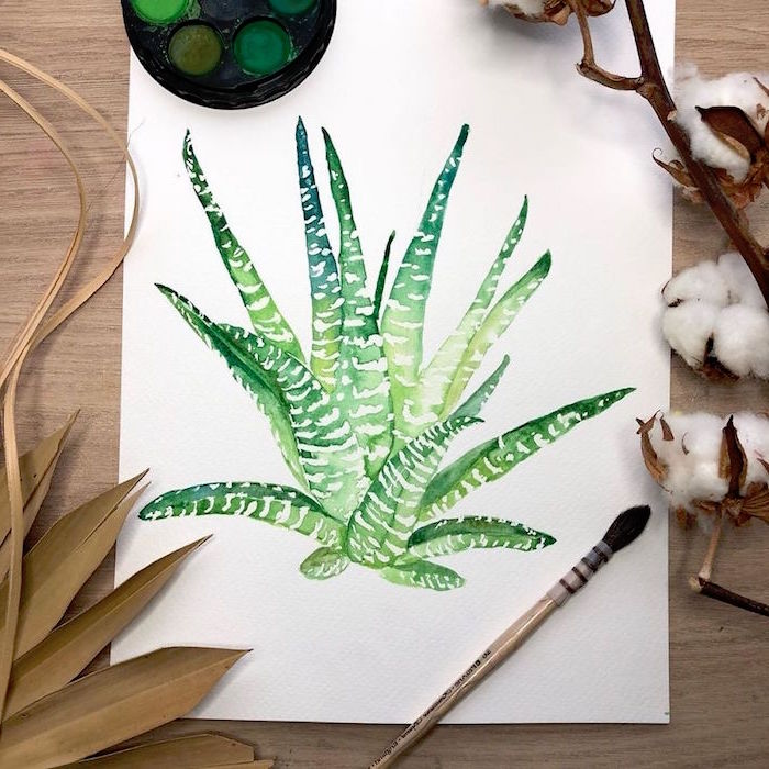 painting of an aloe vera plant, easy watercolor paintings for beginners, painted on white background
