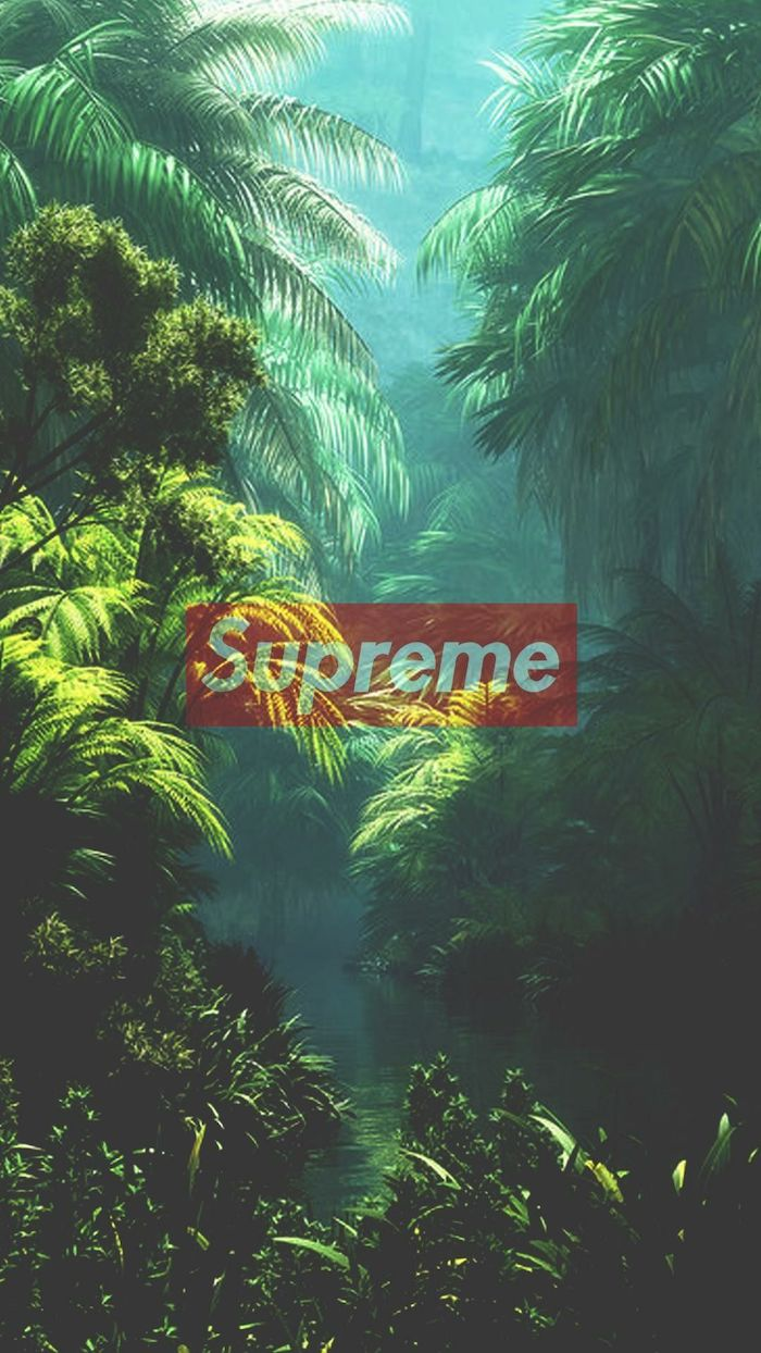 jungle landscape palm trees and bushes for background supreme wallpaper girl supreme logo in red and white at the center